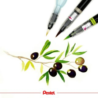 We love olive trees. What is your favourite tree? created by @bibis_bloghuette Products: Colour Brush GFL Aquash Brush water brush FRH  #pentel #pentel_eu #pentelarts #pentelcolourbrush #pentelaquash #watertankbrush #urbansketching #watercolour #aquarell #sketchdaily #sketching #natur #nature #naturedrawing #olive #olivenbaum #olivenzweig #olivetree #olivedrawing #olivart #olivelover #watercolorbotanicals #botanicaldrawing #waterbrush
